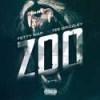 Fetty Wap - Zoo (feat. Tee Grizzley)